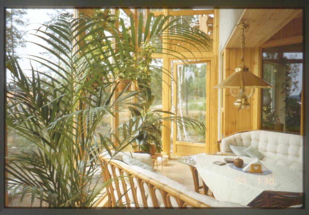 En tropisk vinterträdgård där det gamla fotot har lyckats fånga en varm och mjuk känsla. Föreställ dig där, i soffan, med en kopp varm té…